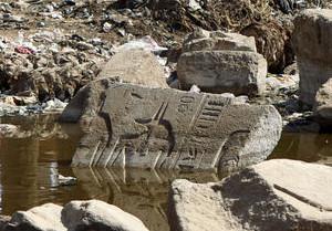 Мусорная лужа, свалка, Египет. Анубис.
