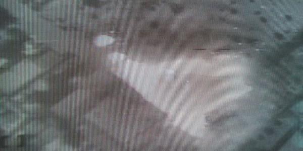 Съемки с вертолета, стрельба по боевикам ИГ в Шейх-Зувейде