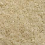 Египет запретил вывоз риса нового урожая