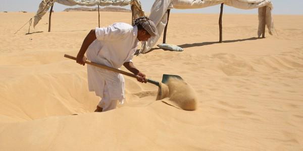 Создатель ямок в песке.