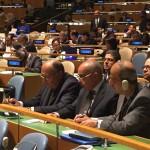 Египет вошел в Совет Безопасности ООН