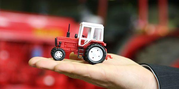 traktor-mtz-egypt-04
